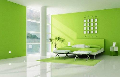 nền nhà màu xanh nên sơn tường màu gì