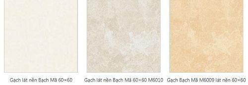 gạch đá lát nền 60x60 1