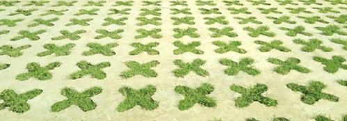 gạch lát sân vườn trồng cỏ 3