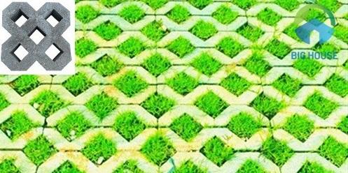 gạch lát sân vườn trồng cỏ 4