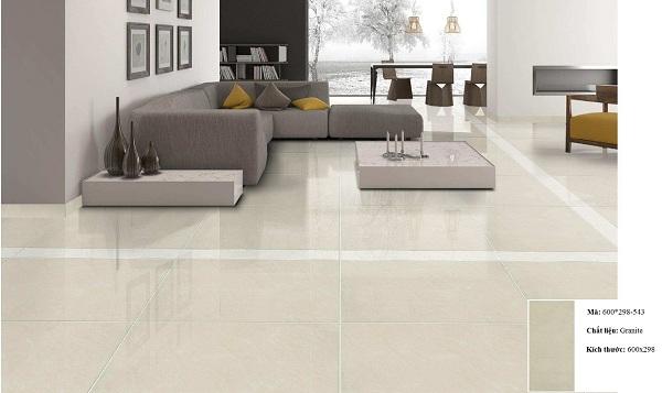 Top mẫu gạch Taicera 30×60 Ấn tượng cho phòng khách, nhà tắm…